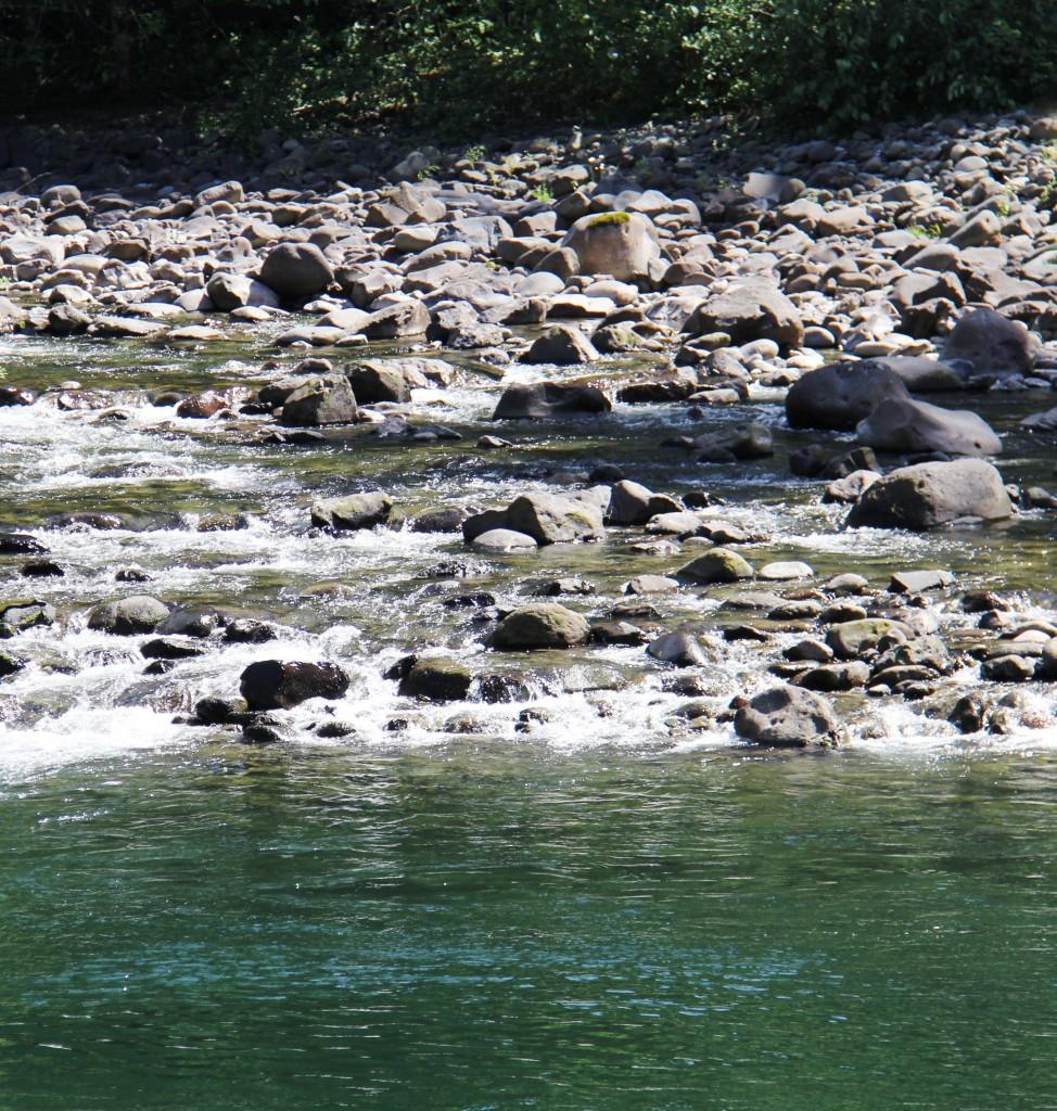 Clackamas River #2
